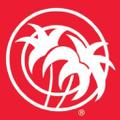 1niceride logo