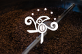 5starcoffeeroasters Logo