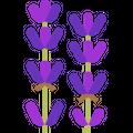 9senses Logo