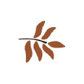 Abrazo Style Logo