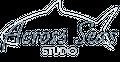 Across Seas Co. Logo