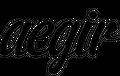 Aegir Boardworks Logo