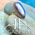 Agabhumi Logo