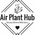 Air Plant Hub Logo