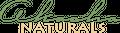 Akasha Naturals Logo