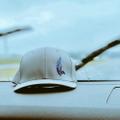 Albatross Golf Wear USA Logo