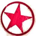 allergypunk Australia Logo
