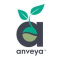 www.anveya.com Logo