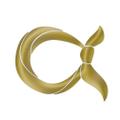 arzuscarf Logo