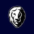 Aslan Mattress Logo