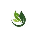 A Spirit of Joy Organic Skin Care Logo