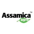 Assamica Agro Logo