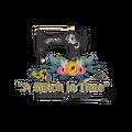 A Stitch In Time Logo