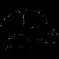 Avidele Logo