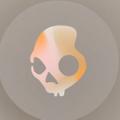 Skullcandy USA Logo