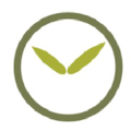 Bamboo Revolution Logo