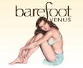 Barefoot Venus USA Logo