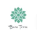 Bare Terre Logo