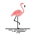 Beachflamingo.com UK Logo