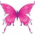 Be Blemish Free logo
