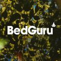 BedGuru Logo
