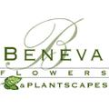 Beneva Flowers Logo