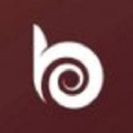 Best Bronze Logo