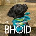 BHOID Logo