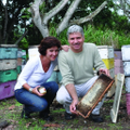 Big Island Bees Coupons and Promo Codes