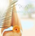Bikinilicious Logo