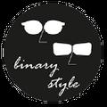 binarystyle logo