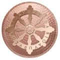 bioayurveda Logo