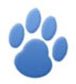 Birddog Lighting USA Logo