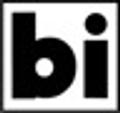 Bisque Imports USA Logo