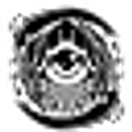Black Eyed Clothing logo