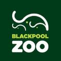 Blackpool Zoo Logo