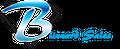 blizzardsales Logo