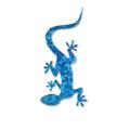 Blue Lizard Skincare Logo