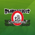 Blunteffects®Air Logo
