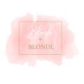 BLUSH + BLONDE BOUTIQUE logo
