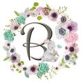 Blush N' Blue logo