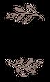 bohorococo Logo