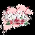 BookishAromas USA Logo