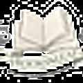 Booksnleaf Canada Logo