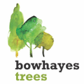 Bowhayes Trees Farm Logo