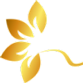 Brazilian Bare logo