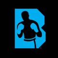 Brooklyn Boxing Logo