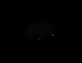 Buffalo Head Leather Logo