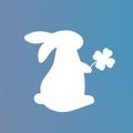 Bunny N Bloom Logo