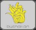 Bushakan Logo